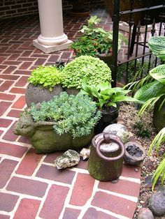 Learn how to create a planter made with hypertufa, a material that has an ancient, hand-hewn quality. They are perfect for alpines, succulents, mosses and more. Fall Planters, Concrete Planters, Cement, Succulents Garden, Garden Pots, Garden Ideas, Container Gardening, Gardening Tips, Cactus