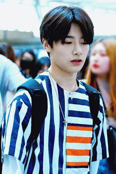 Stray Kids Minho, Lee Know Stray Kids, Stray Kids Seungmin, Felix Stray Kids, Busan, Kids Fans, Korean Boy, Shared Folder, Kid Memes