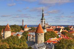 TALLIN PANORAMA estonia day clear oldcity tallin eesti abigfave oldtawn cittàmedievale concordians virgiliocompany tonycamper