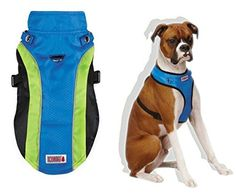 Small Dog Accessory and Fun Bundle with Kong Halter Harness Coat in Blue and PetStages Orka Rugged with Rope Chew to Satisfy Toy * You can get additional details at the image link.Note:It is affiliate link to Amazon.