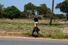 https://flic.kr/p/A4ww7t | EN 1 | Marracuene | Moçambique