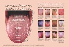 Poster Mapa da Língua/Medicina Chinesa - formato A3 - papel couchê 210gr