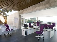 Crossline executive chair by Sedus from Fuze Business Interiors