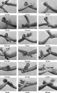 Wing Chun hands..