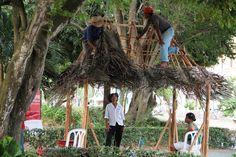 En vivo la construcción de una casa en tejido de palma