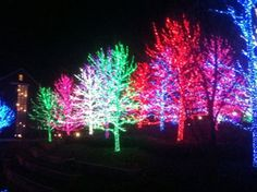 www.Park Cities Christmas Lights