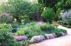 Plan your native garden -   Mary Wattis Brown Native Garden at the UC Davis Arboretum
