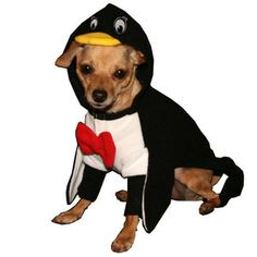 Penguin Costume M now featured on Fab.