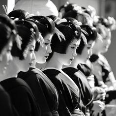 limmynem:    宮川町 新年の挨拶回り by momoyama on Flickr.