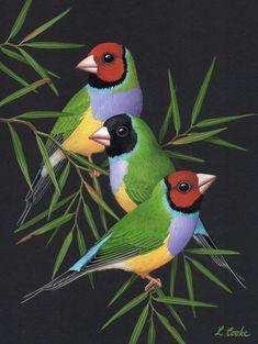 Paintings for Sale – Lyn Cooke Artist Love Birds Drawing, Bird Drawings, Animal Drawings, Pretty Birds, Beautiful Birds, Animal Paintings, Paintings For Sale, Flower Pattern Drawing, Peacock Painting