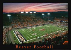 Just north of the University of Oregon is it's rival Oregon State University.  The UO Ducks and OSU Beavers have played against each other in the annual Civil War Game for 116 years.