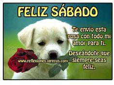 Mejores 119 Imagenes De Feliz Sabado En Pinterest Happy Saturday