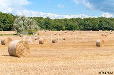 Strohballen auf abgemähtem Getreidefeld, Landwirtschaft, Erntearbeit, heißer Sommertag auf dem Feld, Erntewetter