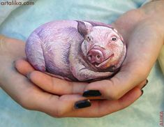 painted rocks: animals: pig