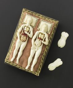 Ivory male and female anatomical figures