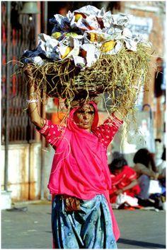 INDIA - Vendor