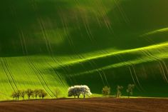 Moravia, Czech Republic | 25 Places That Look Not Normal, But Are ActuallyReal