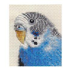 BLUE BUDGERIGAR, BUDGIE, Bird, Full counted cross stitch kit + all materials