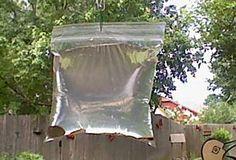 Débarrassez-vous des mouches avec cette astuce incroyable!