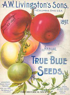 A. W. Livingston's Sons Seed Catalog, Ohio, 1897 #diycrafts #ecrafty #seedcatalogs