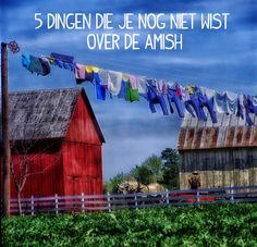 5 dingen die je nog niet wist over de Amish