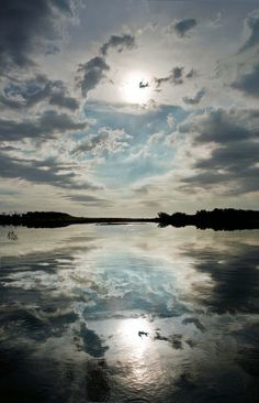 Balance: This picture represents balance with the weight of the sky and reflection of the water being evenly and proportionately distributed in the space.