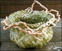 flax basket - lots of tutorials Flax Weaving, Straw Weaving, Weaving Art, Basket Weaving, Leave Art, Flax Fiber, Maori Designs, Maori Art, Leaf Crafts