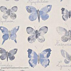 Papel Pintado Curiosity CRY_6549_60_19, papel con distintos dibujos de mariposas en tonos de azul acompañadas algunas de ellas por el científico.