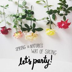 spring time - party time!