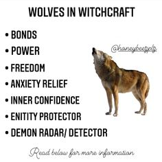 Animal Spirit Guides, Spirit Animal, Wiccan Spells, Magick, Hecate Goddess, Scary Animals, Animal Medicine, Witchcraft For Beginners, Eclectic Witch