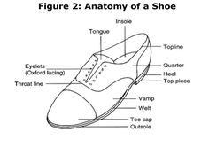 Anatomy of a shoe (men's)