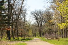 Outdoor Trails: With nearly 600 acres of parks, nature preserves and trails to explore in Downers Grove, there's plenty to keep you active. Visit http://www.dgparks.org/sports-and-fitness/parks-and-trails for more info!