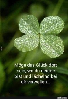 Plants Quotes Birthday 69 Ideas For 2019 St Patricks Day Quotes, Happy St Patricks Day, Saint Patricks, Christmas Nail Art, Holiday Nails, Vintage Christmas, Christmas Holiday, Christmas Decorations, Chromatography For Kids