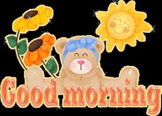 Good morning pictures - Bear