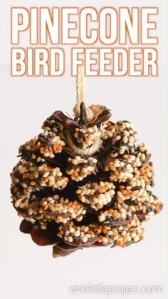 How to make pinecone bird feeders Make winter for seniors from 46 ideasJust craft winter for seniors ideas super cute winter crafts for kids - this little blue super cute winter crafts Pine Cone Bird Feeder, Bird Feeder Craft, Garden Bird Feeders, Bird House Feeder, Pine Cone Art, Pine Cones, Bird Crafts, Nature Crafts, Felt Crafts