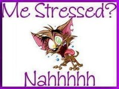 Me Stressed Pictures, Photos, and Images for Facebook, Tumblr, Pinterest, and Twitter