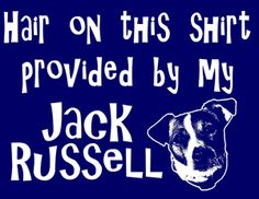 Jack Russell tshirt | Jack Russell T-Shirt