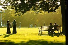 Evening at Duthie park Aberdeen