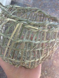 Lamandra woven basket indigenous technique Weaving Art, Hand Weaving, Lomandra, Palm Frond Art, Pine Needle Baskets, Basket Weaving, Fiber Art, Wood Crafts, Crafts For Kids