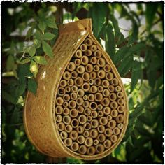 Bee house of bamboo tubes attracts Mason bees! (they pollinate 20x more than honey bees)