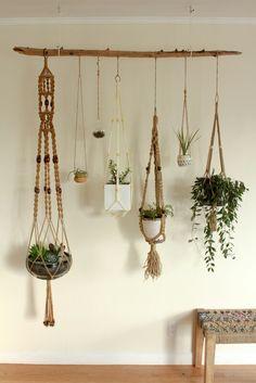 Macrame + Succulents
