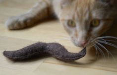 GLOGIRLY: Felt Catnip Toy Giveaway From Edgar's Attic