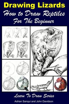 Learn To Draw Drawing Lizards - How to Draw Reptiles For the Beginner - Drawing Lizards - How to Draw Reptiles For the BeginnerTABLE OF CONTENTSIntroductionDrawing ToolsDrawing with PencilExamples: Amazing Drawings, Cool Drawings, Pencil Drawings, Drawing Techniques, Drawing Tips, Learn Drawing, Drawing Drawing, Drawing For Beginners, Beginner Drawing