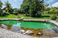 Outdoor Decor, Nature, Home Decor, Decoration Home, Naturaleza, Interior Design, Home Interior Design, Scenery, Home Improvement