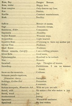 Polite Society at Home and Abroad, 1891 Writing A Book, Writing Prompts, Writing Tips, Rose Campion, Flower Meanings, Plant Meanings, Language Of Flowers, Happy Love, Witchcraft