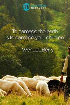 40 Best Environmental Quotes To Inspire You To Help Save The Planet – Kinder Save Nature Quotes, Mother Nature Quotes, Nature Quotes Adventure, Life Quotes Love, Crush Quotes, Environment Quotes, Good Environment, Summer Beach Quotes, Justice Quotes