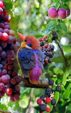 Birds ©: A Kingfisher in an Orchard. All Birds, Cute Birds, Pretty Birds, Little Birds, Beautiful Birds, Animals Beautiful, Exotic Birds, Colorful Birds, Animals And Pets