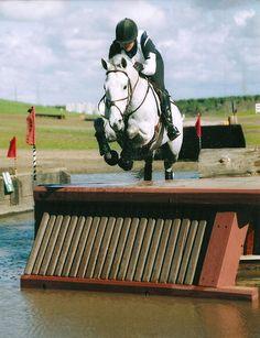 Equine/ Eventing