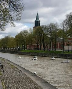 Aurajoki/river,Turku,Finland Turku Finland, Archipelago, Amazing Places, Summer 2015, Countries, Scandinavian, To Go, Country Roads, Houses
