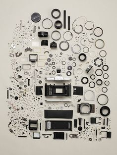 Camera bits organized neatly by photographer Todd McLellan
